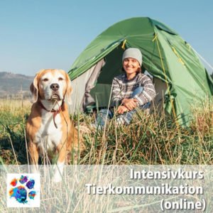 Intensivkurs Tierkommunikation 1