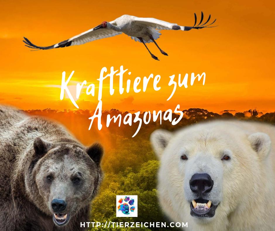 Krafttiere zum Amazonas