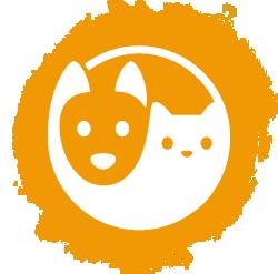 Basiskurs Tierkommunikation 1