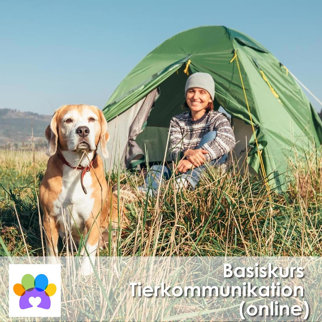Basiskurs_Tierkommunikation